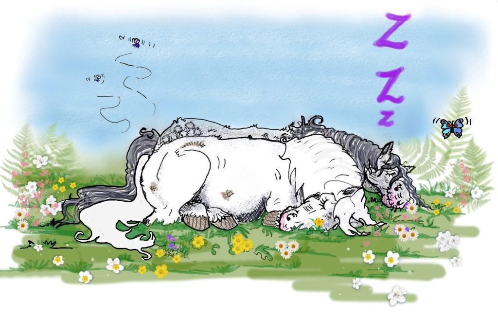 Highland snoozes